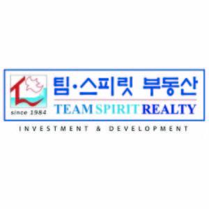 team_spirit